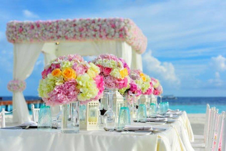 Шатер на весілля : всі за и проти